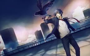 Picture bird, anime, art, guy