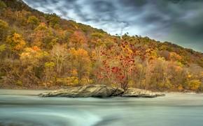 Wallpaper stream, autumn, river, the wind