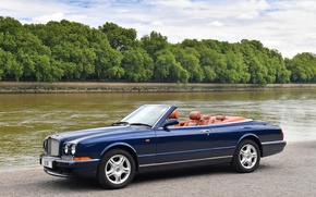 Picture trees, Bentley, convertible, Cabriolet, Azure