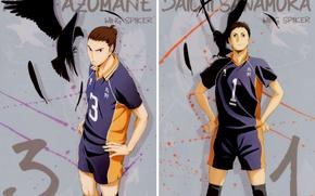 Picture feathers, captain, crows, guys, sports uniforms, Haikyuu!!, Volleyball!, Azumane Asahi, Dai. Sawamura, by Haruichi Furudate
