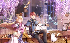 Picture cat, dragon, fairy, girl, guy