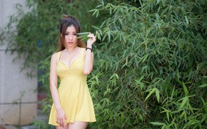 Picture summer, girl, face, hair, dress, legs, the bushes