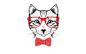 Picture cat, cat, red, butterfly, minimalism, glasses, light background, cat