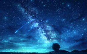 Picture the sky, night, nature, tree, the milky way, shooting star, OR