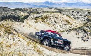 Picture Sand, Mini, Black, Desert, Hills, Rally, Dakar, Dakar, Rally, Buggy, Buggy, X-Raid Team, 314, MINI ...