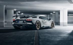 Picture Lamborghini, supercar, rear view, 2018, Novitec Torado, Aventador S