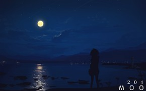Picture sea, girl, night, the moon, moon2017