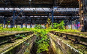 Picture roof, grass, graffiti, plant, rails, hdr, the bushes, urban, ultra hd, Savrasenko