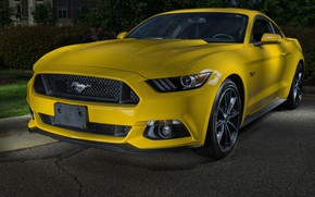 Wallpaper Mustang, Ford, GT 5.0