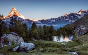 Picture trees, mountains, Switzerland, Alps, Switzerland, Alps, Zermatt, Zermatt, Grindjisee, a small lake