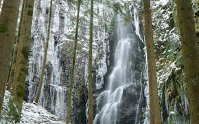 Picture winter, trees, rocks, waterfall, Germany, Baden-Württemberg, Castle Creek Waterfall
