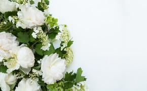 Picture flowers, background, bouquet, frame, Flowers, bundle