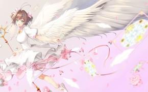 Picture girl, map, wings, angel, anime, art, kinomoto sakura, card captor sakura