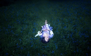 Picture grass, girl, flowers, stay, dress, Lichon