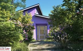 Picture summer, vegetation, garden, structure, property