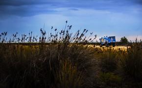 Picture Nature, Grass, Sport, Truck, Race, Master, Beauty, Russia, Kamaz, Rally, Rally, KAMAZ, RedBull, Master, Overcast, …
