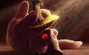 Wallpaper cat, Single, Psychedelic trance, Cover art, music, Infected Mushroom, mushroom, cat, kitty, Spitfire