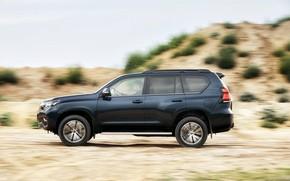 Picture movement, vegetation, SUV, profile, Toyota, 4x4, Land Cruiser, the five-door