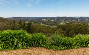 Picture trees, field, valley, Australia, panorama, forest, the bushes, Adelaide