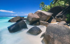 Picture sea, beach, summer, tropics, stones, palm trees, Nature