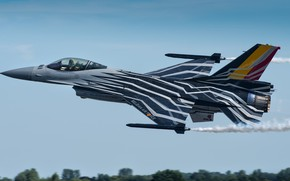 Picture tuning, the plane, combat, General Dynamics F-16AM Fighting Falcon