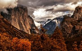 Picture autumn, trees, mountains, CA, USA, Yosemite, Yosemite National Park