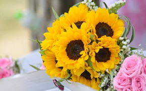 Picture sunflowers, flowers, bouquet