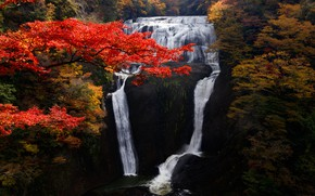 Picture autumn, trees, landscape, nature, waterfall, stream