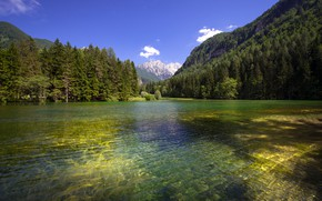 Picture forest, mountains, lake, the ripples on the water, Slovenia, Slovenia, Planšarsko lake, Plinarsko lake
