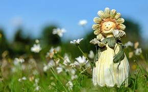 Picture field, summer, grass, flowers, chamomile, doll, figure