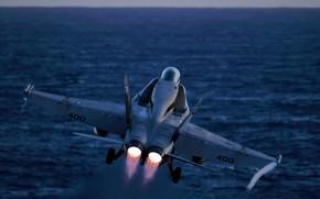 Picture Hornet, carrier-based fighter-bomber, McDonnell Douglas, FA-18