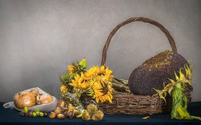 Picture basket, sunflower, bow, nuts, seeds, acorns