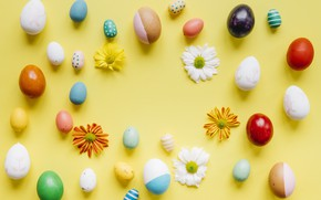 Picture flowers, chamomile, spring, colorful, Easter, flowers, spring, Easter, eggs, decoration, Happy, the painted eggs
