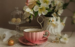 Picture flowers, tea, roses, candy, Cup, still life, alstremeria, coffee pot