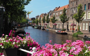 Picture flowers, river, Home, boats, Street, Building, Flowers, Netherlands, promenade, Bridge, Flowers, Street, Netherlands, The bridge, …