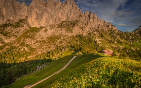 Picture greens, grass, the sun, clouds, trees, flowers, mountains, stones, rocks, Switzerland, slope, Alps, meadow, house, …