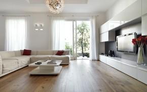 Picture flowers, sofa, bouquet, chandelier, vase, house, modern, living room, plasma, window, home, lamp, Luxury