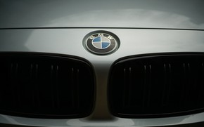 Picture sign, BMW, emblem, the front
