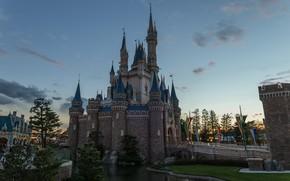 Picture The city, Castle, Park, Landscape, Disneyland