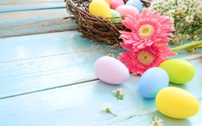 Picture holiday, eggs, spring, Easter, socket, gerbera