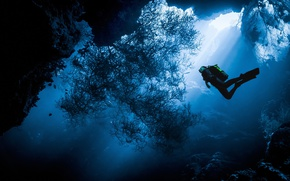Picture sea, water, the ocean, people, diver, under water, diving, diver