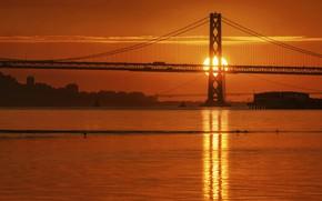 Picture the sun, bridge, river, dawn
