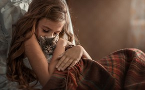 Picture love, kitty, hair, girl, blanket