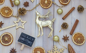 Picture New Year, Christmas, merry christmas, decoration, xmas, holiday celebration