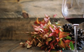 Picture wine, glass, bouquet leaves
