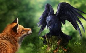Wallpaper bird, Fox, Raven, photoshop