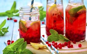 Picture berries, lemon, juice, juice, lemon, drink, mint, currants, lemonade, drink, berries, mint, currants, lemonade