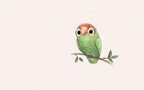 Picture art, children's, parrot, Sydney Hanson