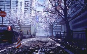 Picture auto, the city, spring, Sakura