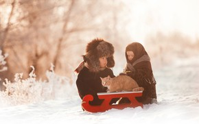 Picture winter, cat, snow, children, boy, girl, sled